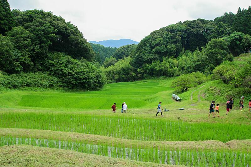 美しき里山の風景は、そこに住まう人々の並々ならぬ作業の賜物からできている