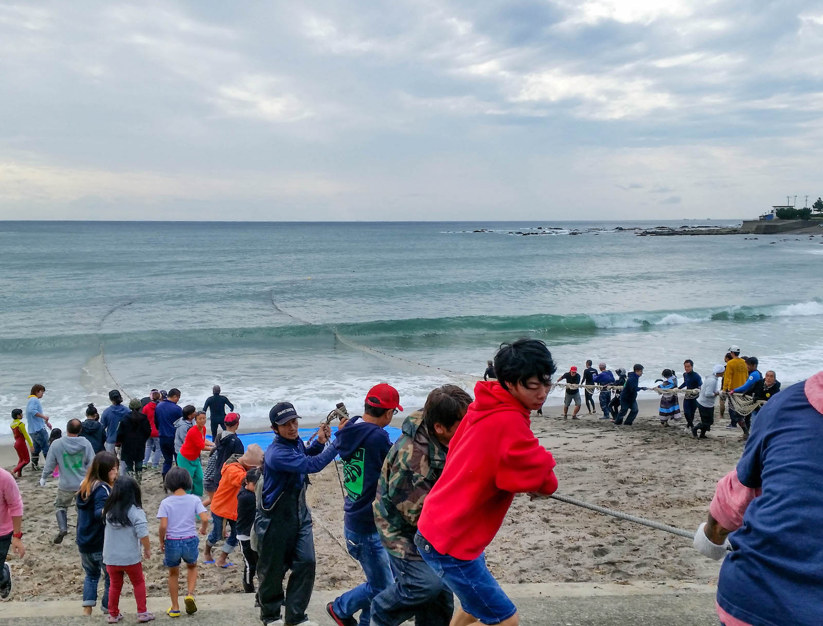 天津二タ間海岸で行なわれる地曳網は引き手50名以上の大網が特徴
