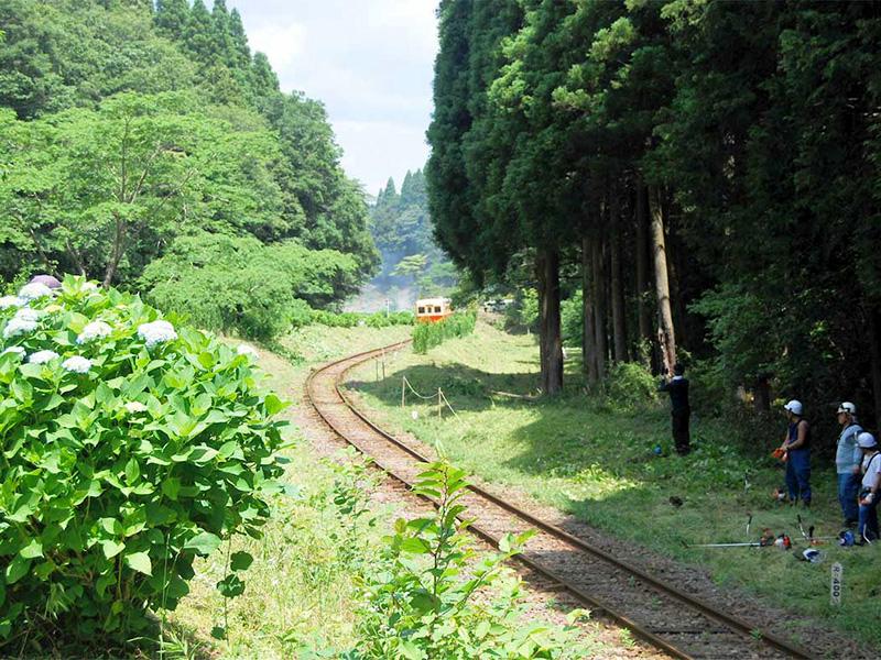 """5年前まで竹藪で鉄道が見えなかったという""""のだっ掘""""。いまは春に一面菜の花畑となる。"""