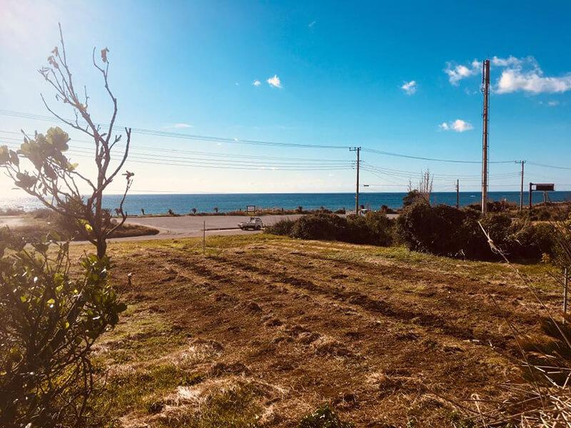 所有する海辺の畑のひとつ。この海風を再生可能エネルギーとして利用することが目標