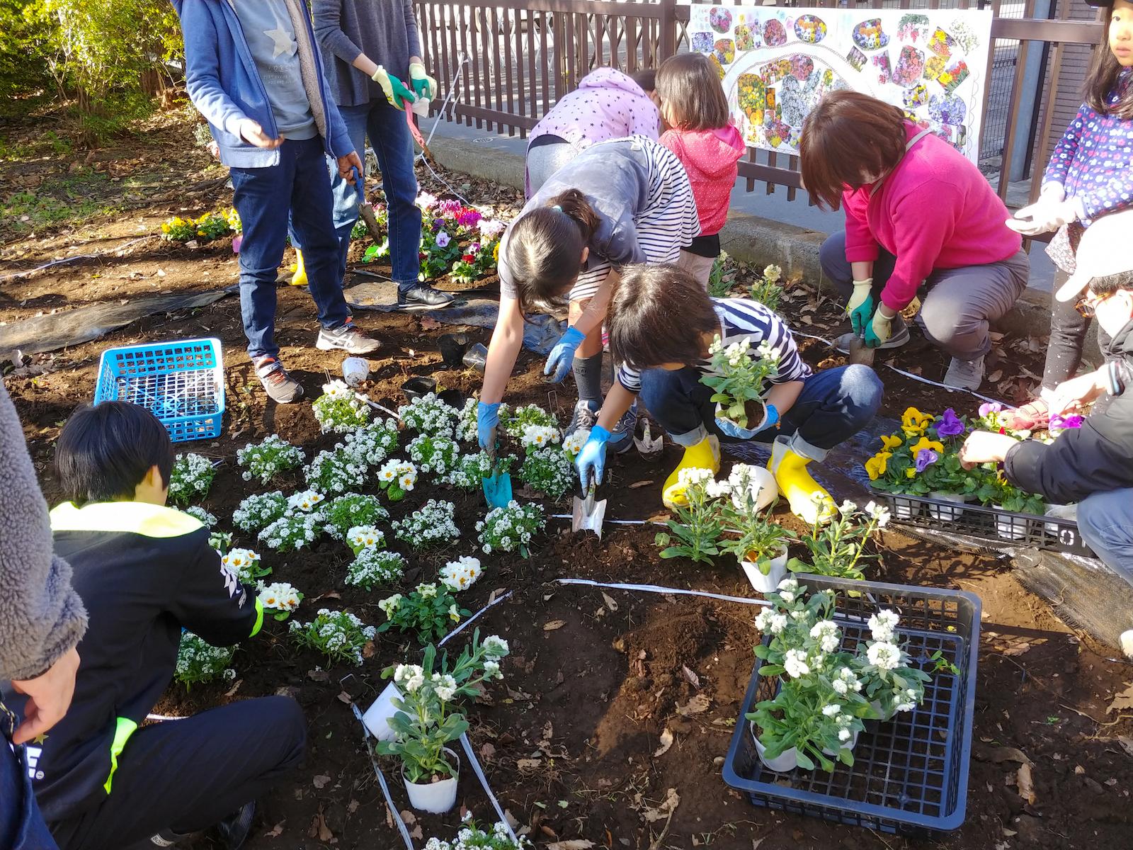 第二回の花壇ワークショップでは、デザインに沿って植物の植え替えが行われた。