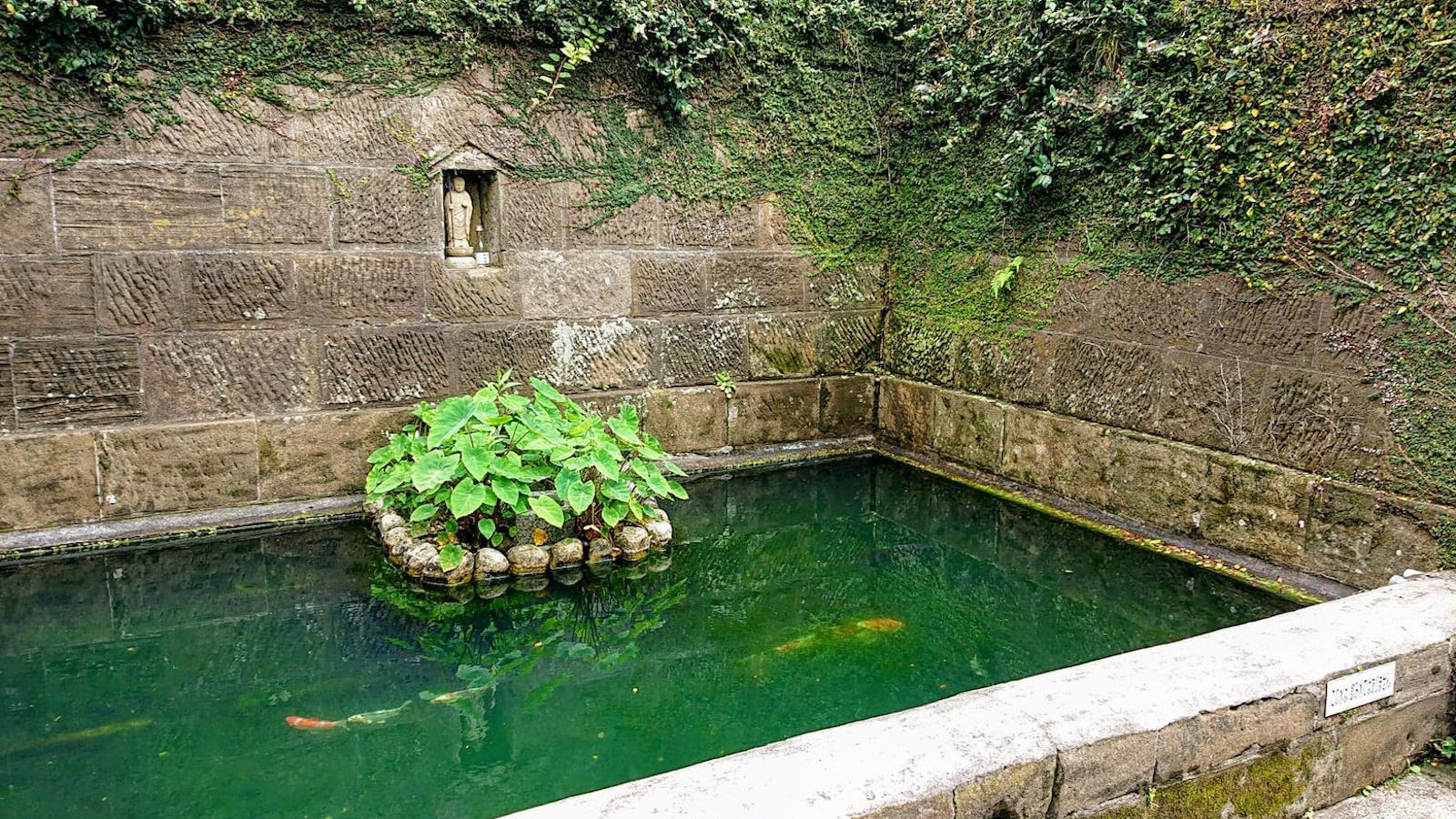 伝説の芋井戸
