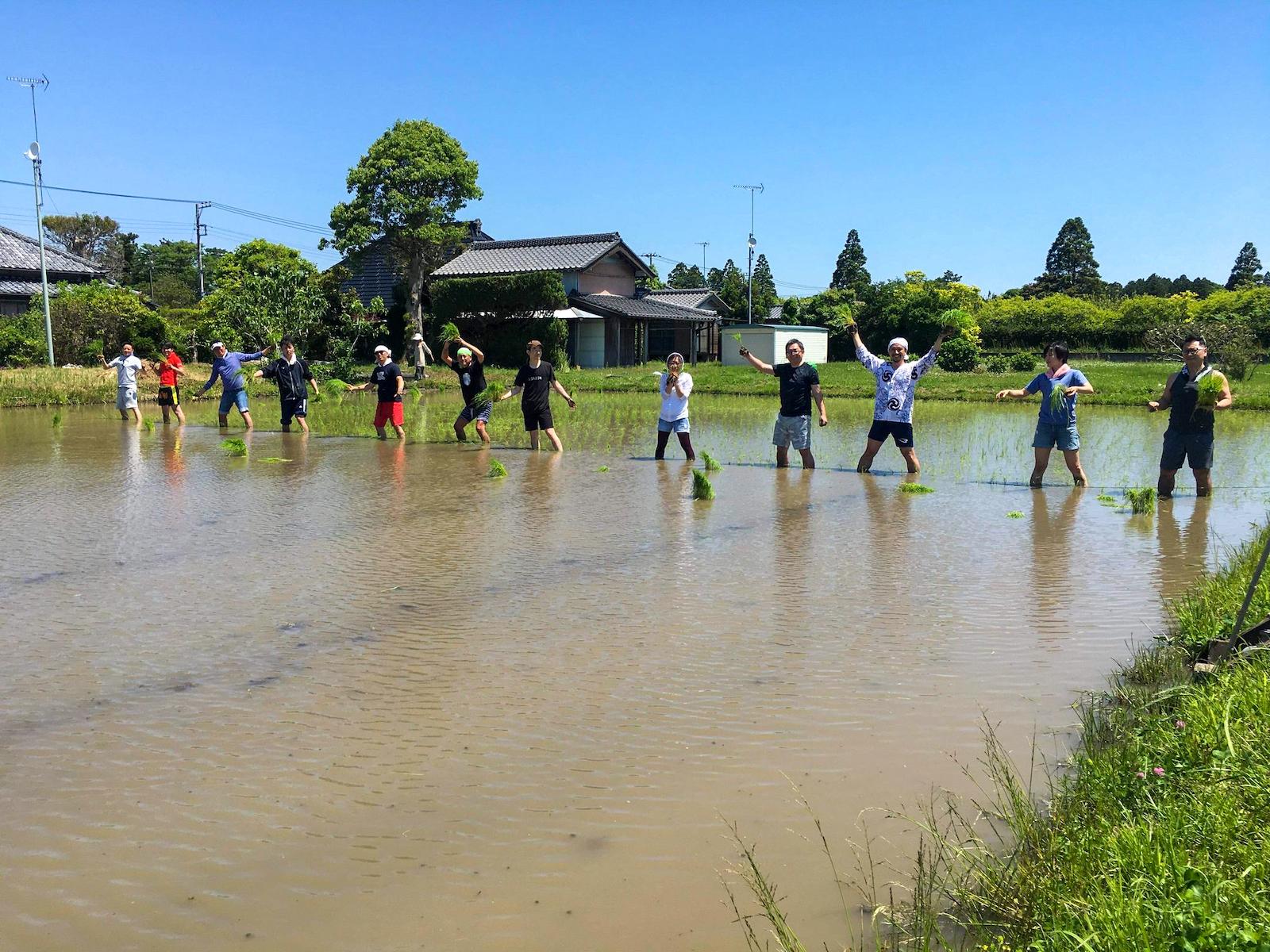 豊かな自然の循環が感じられる房総半島・千葉県いすみ市。ぜひ足をお運びください♪