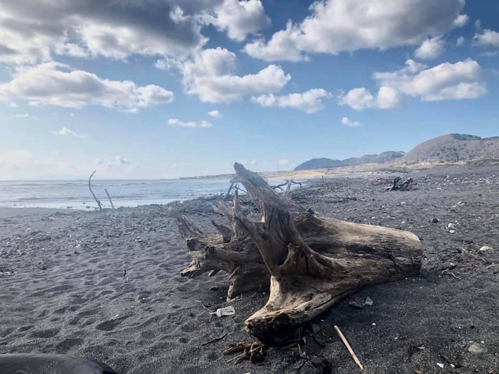 訪れる度にインスピレーションを与えてくれる白浜の海