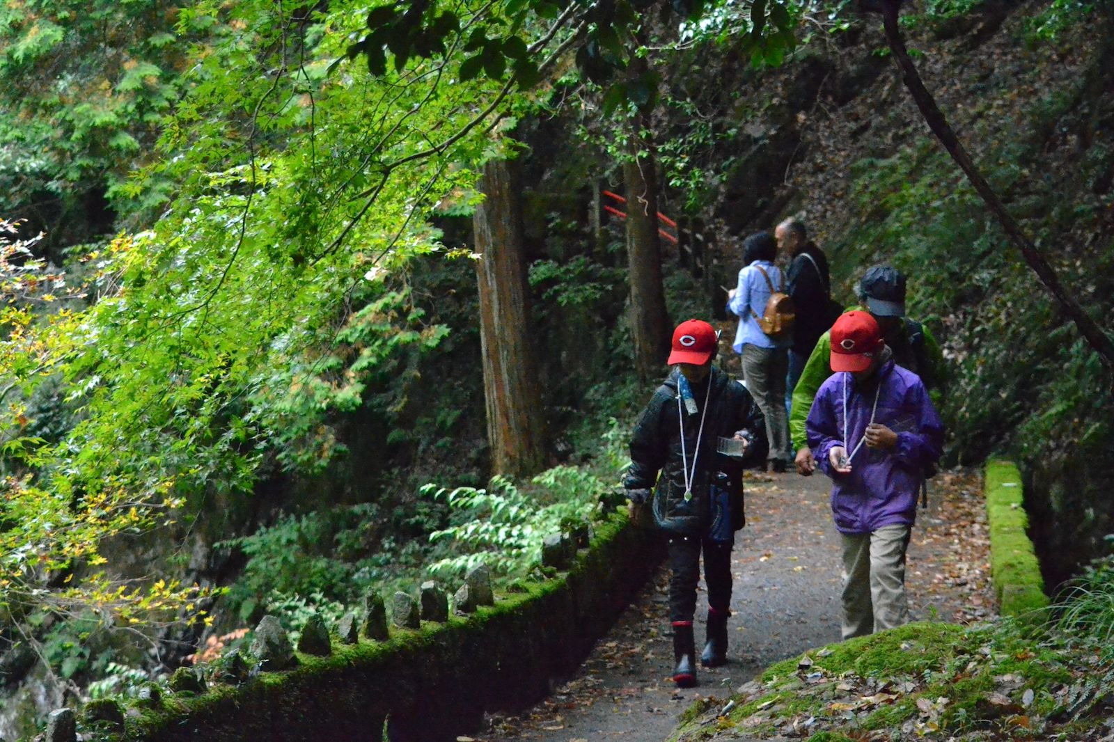姉妹滝近くの探勝路。観察会帰りの小学生が歩いています。