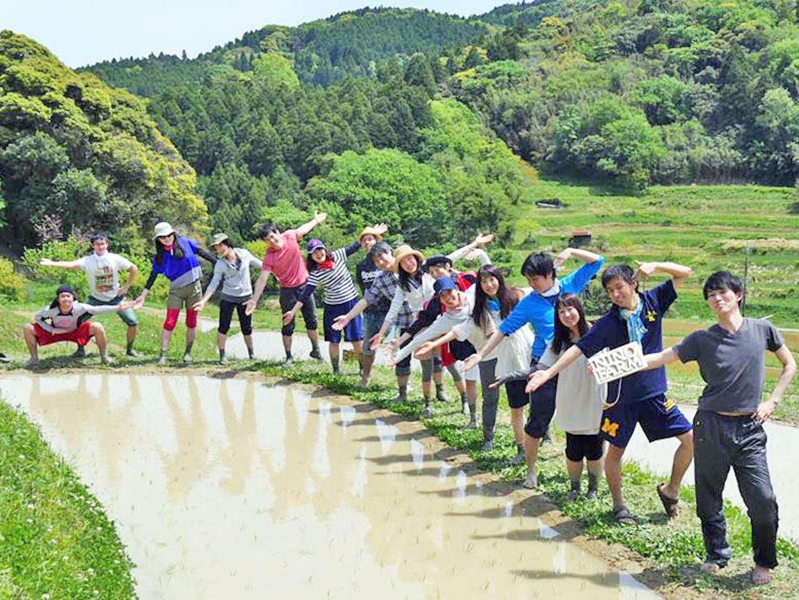 千葉県の大山千枚田での米作り。東京から一番近い棚田と言われています。