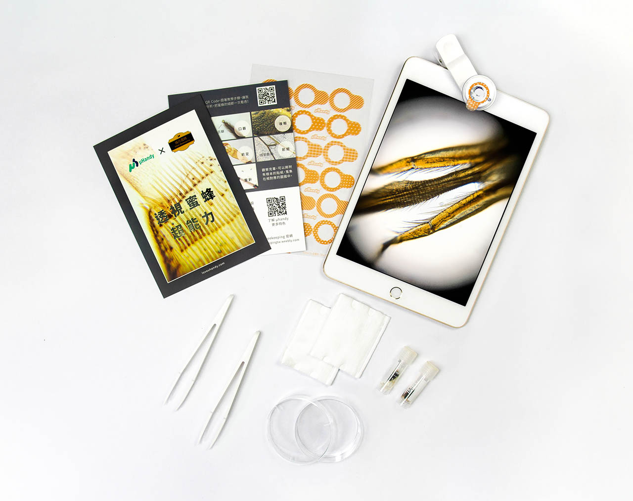 「透視蜜蜂超能力」顯微材料包