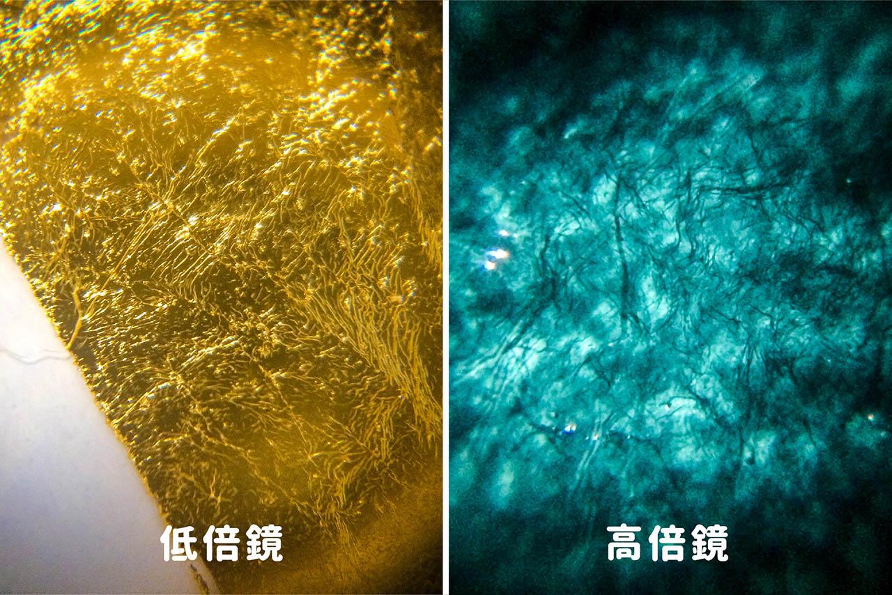 搭配 uHandy 高低倍鏡,可以看見金箔在不同光線下,截然不同的獨特風貌——高倍鏡下的金箔是美麗的藍綠色!
