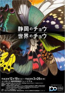 静岡のチョウ 世界のチョウ