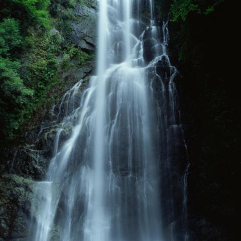 大滝のサムネイル