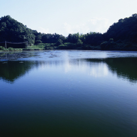 城池のサムネイル
