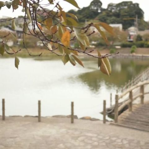 Utozaka Ikeda proponen el parque