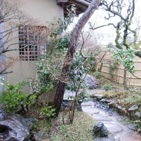 Aldeia da camélia de jardim de cume estática