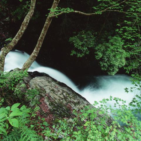 天子七滝のサムネイル