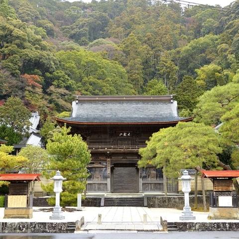 臨済寺のサムネイル