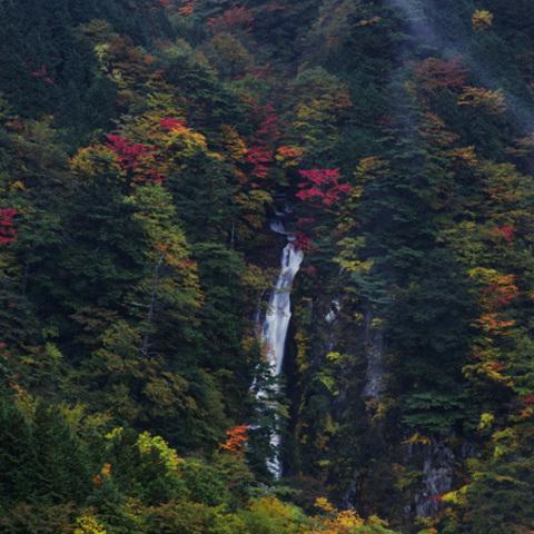 安倍の大滝のサムネイル