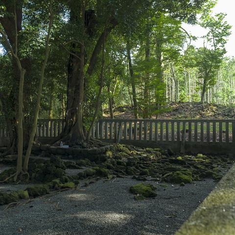 山宮浅間神社のサムネイル