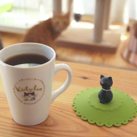 【閉店】ねこカフェ くるるんのサムネイル