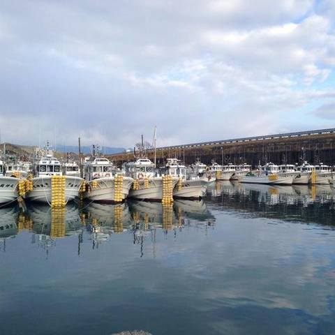 由比港漁業協同組合のサムネイル