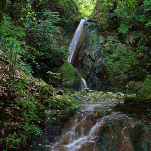 菊水の滝のサムネイル