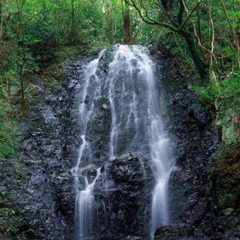 松葉の滝のサムネイル