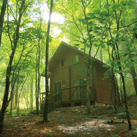 県民の森 のサムネイル