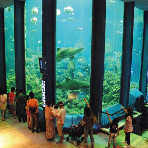 Tokai University oceanography Museum