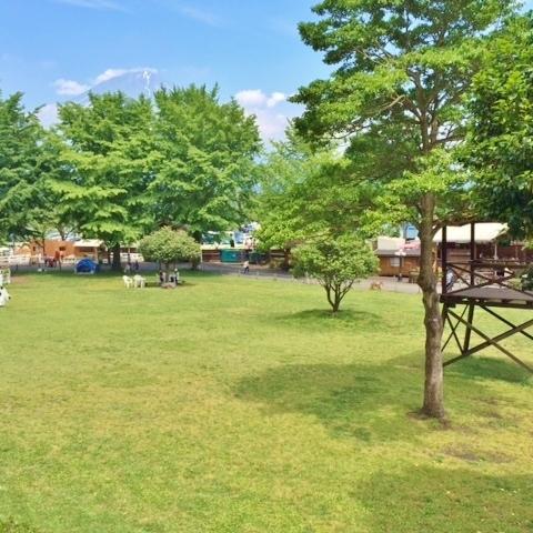 まかいの牧場 (富士山朝霧高原)のサムネイル
