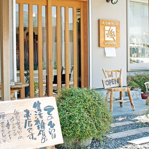 楓(TENO-HIRA)のサムネイル