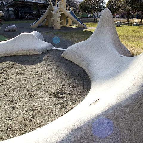 高沢公園のサムネイル