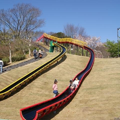 蓮華寺池公園のサムネイル
