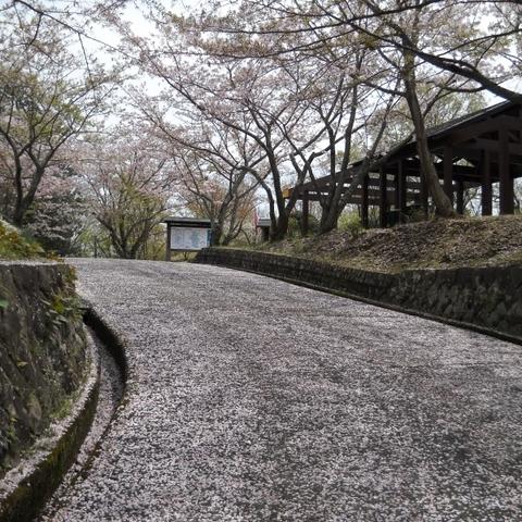 겐지야마공원
