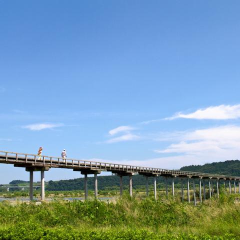 蓬莱橋のサムネイル