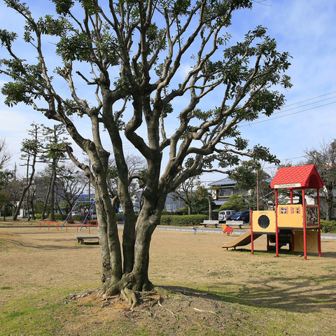 清水清見舄公園