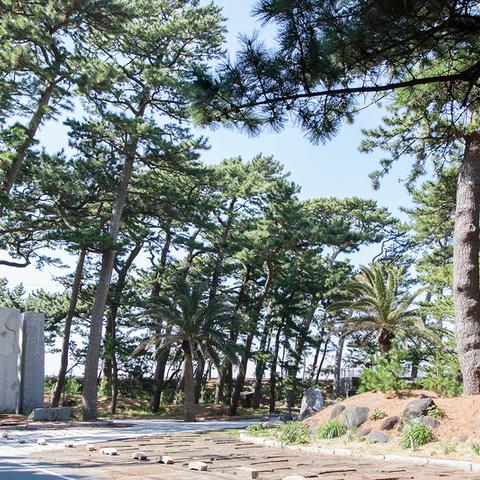 御浜岬公園のサムネイル