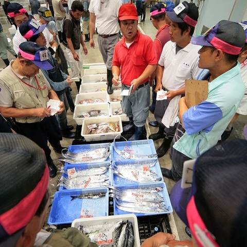 沼津魚市場INO(イーノ)のサムネイル