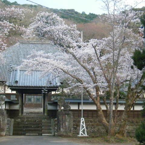 玉澤妙法華寺のサムネイル