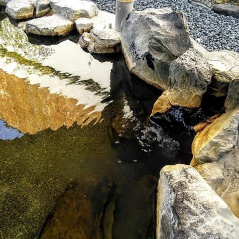 さがら子生れ温泉(さがらこうまれおんせん)のサムネイル