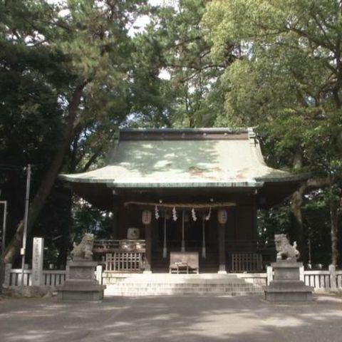 宗像神社 女体の森のサムネイル