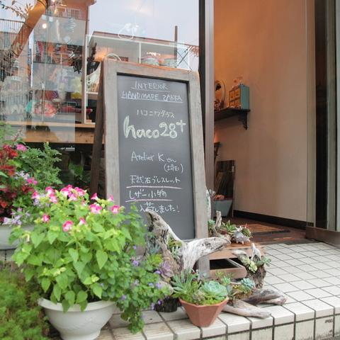 【閉店】haco28+(ハコニワプラス)のサムネイル