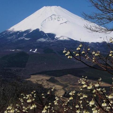 黒岳 (富士山ビューポイント)のサムネイル