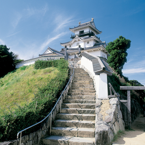 掛川城のサムネイル