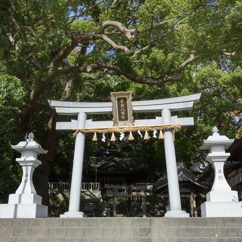 Đền thờ tonito Hachimangu