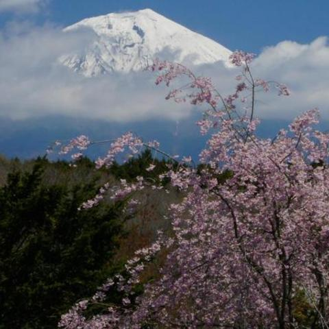 人穴地区 (富士山ビューポイント)のサムネイル