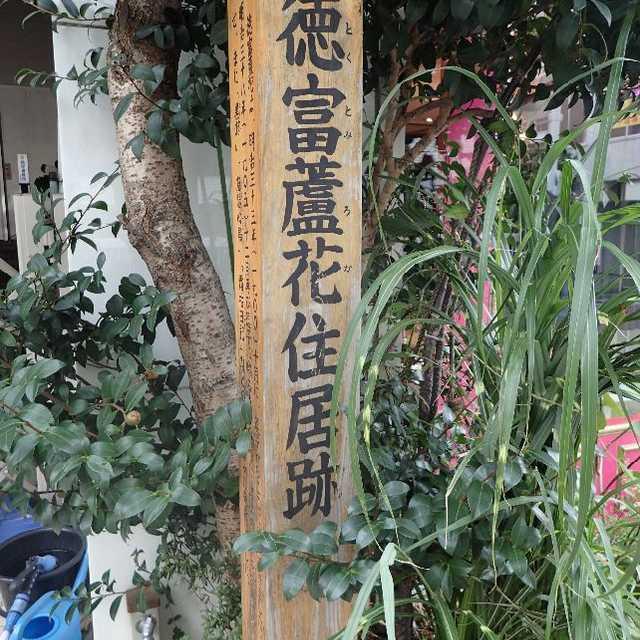 蘆の花は見所とてもなく