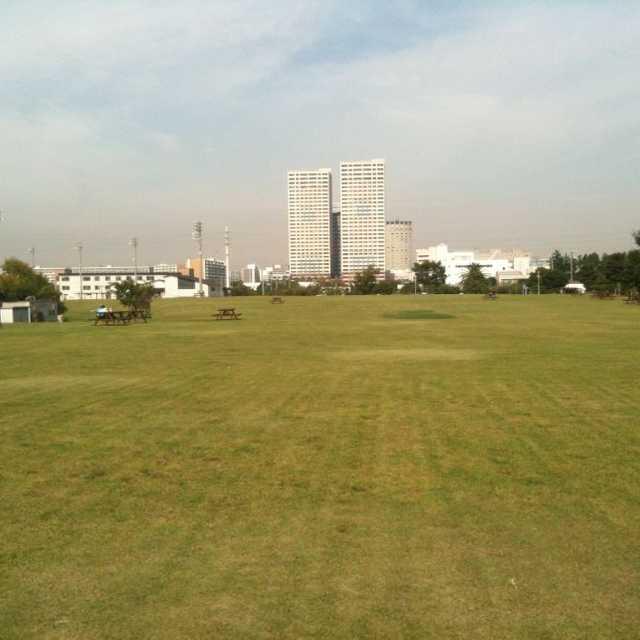 明海大学の芝
