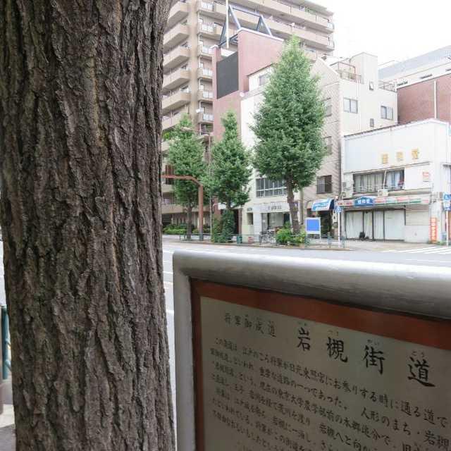 日光御成道・岩槻街道