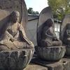 【行徳三十三観音】第25番 西光山源心寺
