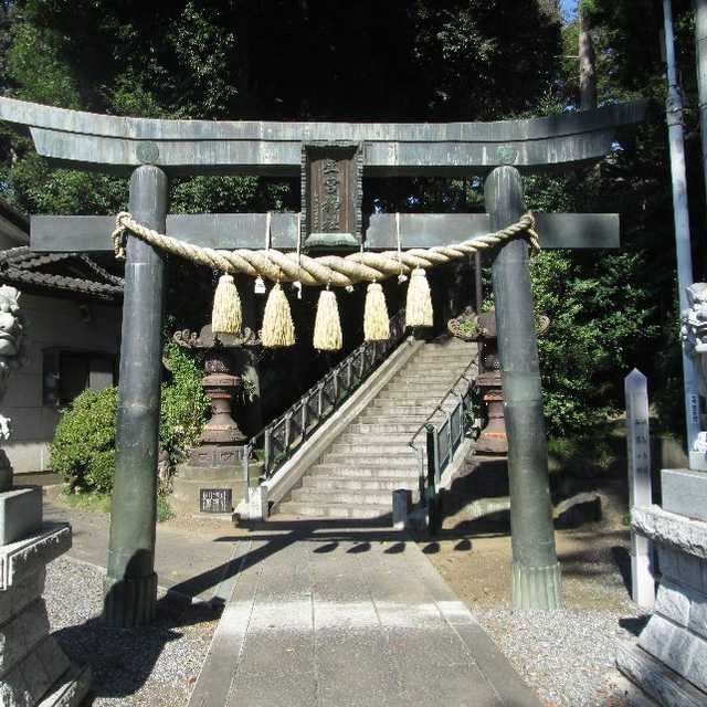星宮神社の銅造鳥居