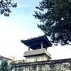 念仏院・八王子の「時の鐘」